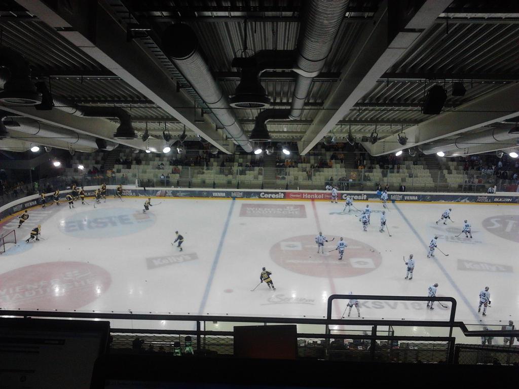 halle eishockey